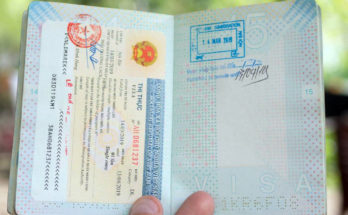 online vietnam vizesi